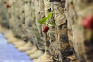 4th Brigade Combat Team (Airborne) homecoming. Photo by Percy Jones Date: 10.06.2012