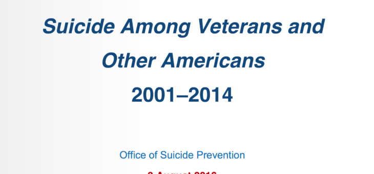 2016 Veteran Suicide Report