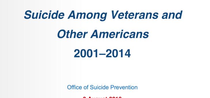 2016 Veteran Suicide Report
