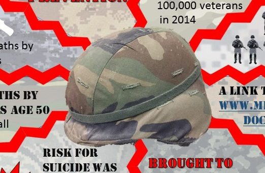 Insights from the 2016 Veteran Suicide Data Report: An Infographic