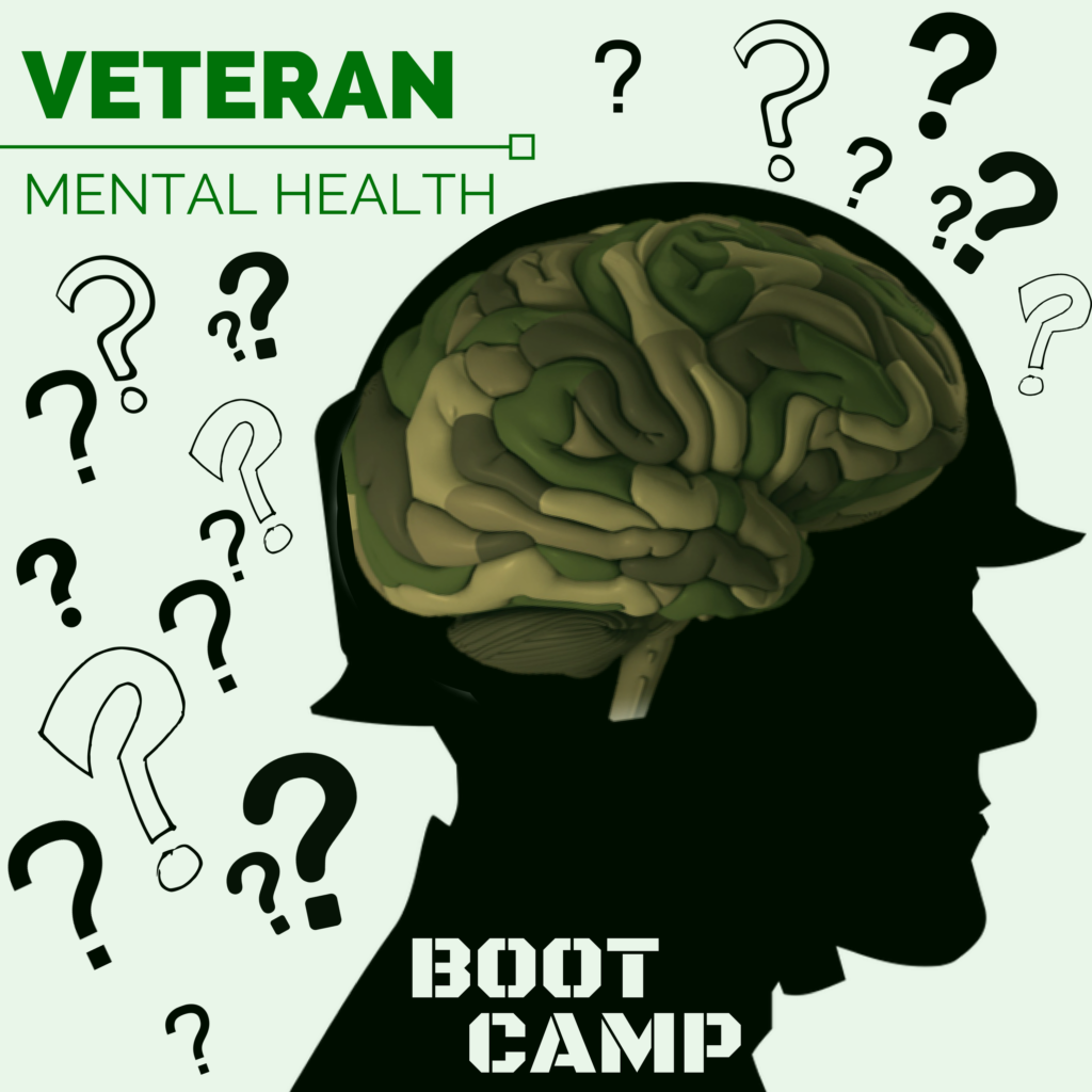 Veteran Mental Health Bootcamp Beyond Ptsd And Tbi Head Space And